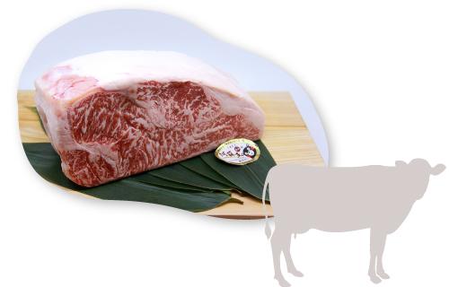 熊本県の雄大な土地で育ったあか牛